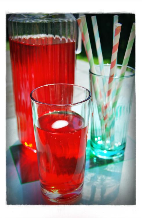 Hibiscus Ginger Drink